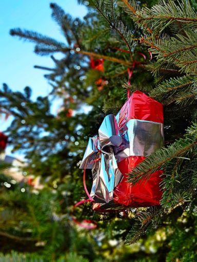 Im Wangener Ortszentrum steht ein Weihnachtsbaum, vor allem dank engagierter Bürger. Letztes Jahr war dies nicht der Fall.  Foto: Tatjana Eberhardt