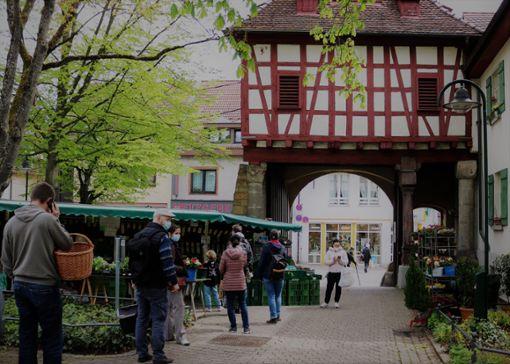 Der Wochenmarkt in Möhringen ist in den historischen Spitalhof umgezogen.   Foto: Eva Herschmann