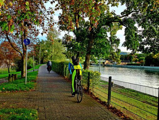 Viel befahren: der Abschnitt des Neckartal-Radwegs entlang des Cannstatter Wasen. Foto: Tatjana Eberhardt