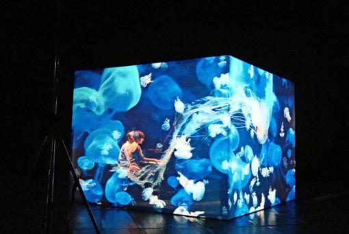 """Das Duo Jost Costa interpretiert   das """"Meeresgeflüster"""" der Videokünstlerin Katharina Wibmer zusammen mit dem Meinhardt & Krauss Cinematic Theatre.  Foto: Eva Herschmann"""