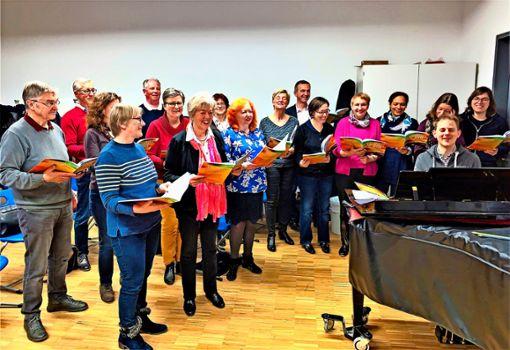 Der Kammerchor Cantabile Gerlingen während einer Probe mit dem Dirigenten Matthias Nassauer. Foto: Melanie Axter