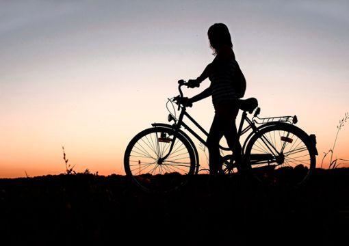 In Zuffenhausen kämpft eine Initiative für die Anliegen von Fahrradfahrern.  Foto:  z/Pixabay
